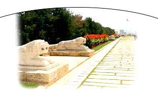 Anıtkabirde'ki Aslanlı Yoldan Bir Görüntü